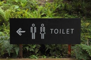 Canva - Toilet Signage Beside Green Leaf